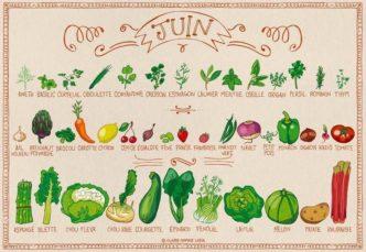 fruits et légumes de Juin